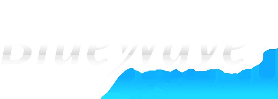 Blue Wave Jet Ski Rentals